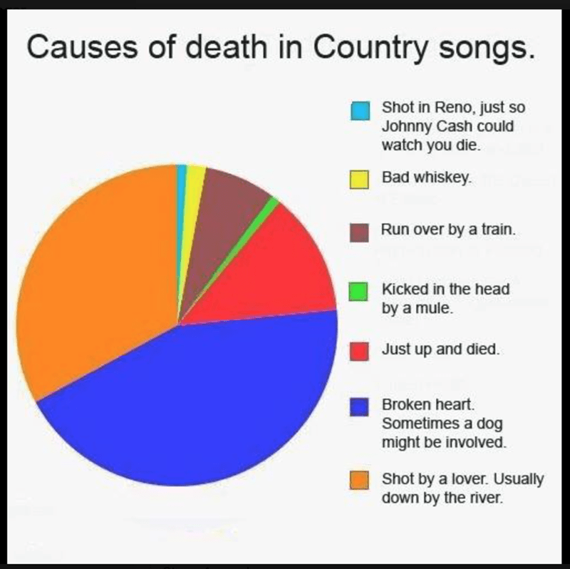 country music meme - Text - Causes of death in Country songs Shot in Reno, just so Johnny Cash could watch you die. Bad whiskey. Run over by a train. Kicked in the head by a mule Just up and died. Broken heart. Sometimes a dog might be involved Shot by a lover. Usually down by the river.