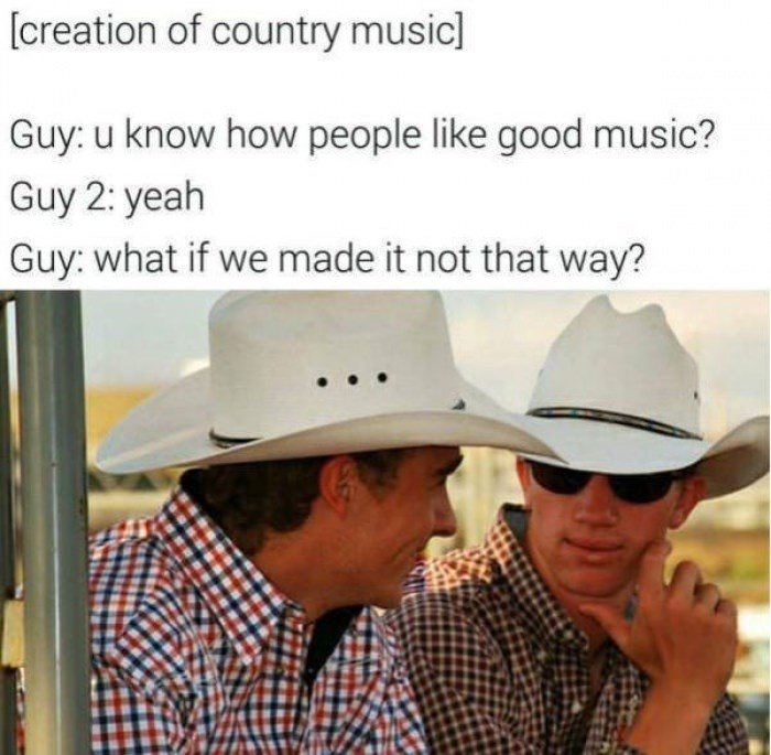 "Caption that reads, ""[Creation of country music] Guy: you know how people like good music? Guy 2: yeah; Guy: What if we made it not that way?"" above a pic of two guys wearing cowboy hats talking"