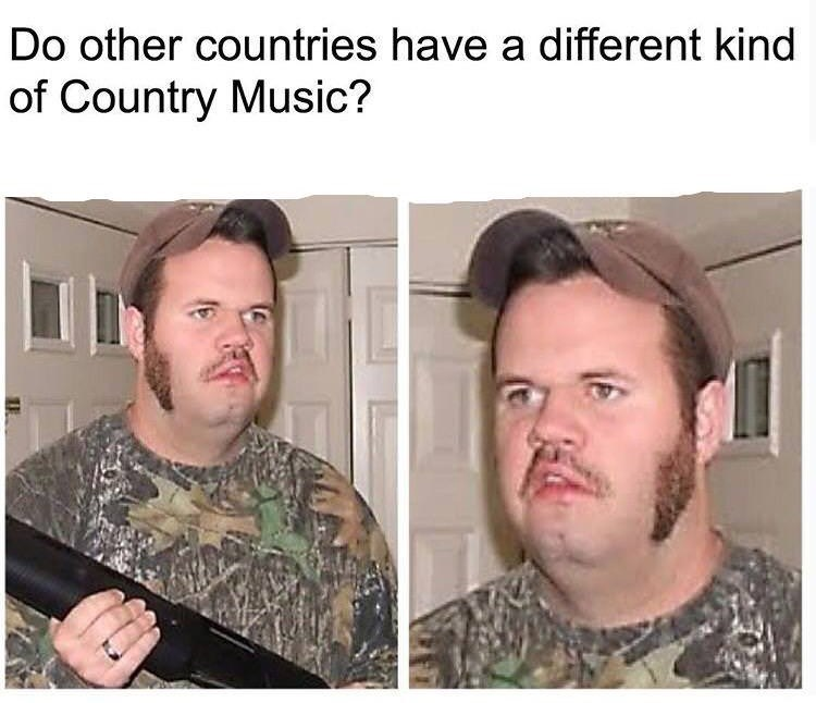 country music meme - Hair - Do other countries have a different kind of Country Music?