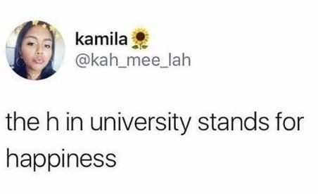 college meme about university having no happiness in it