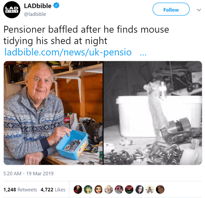 mouse meme about an old man finds a mouse cleaning his shed