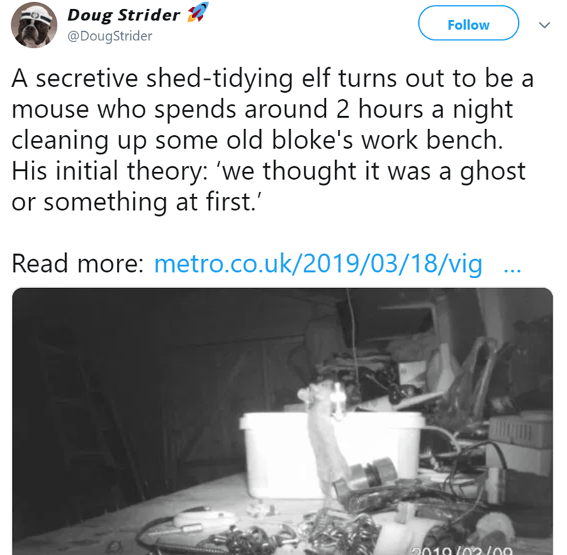 mouse meme that cleans a shed for 2 hours a day