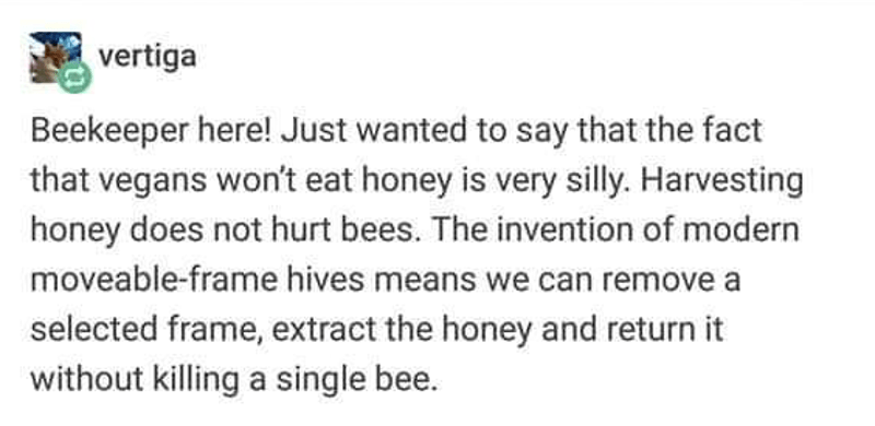 Text - vertiga Beekeeper here! Just wanted to say that the fact that vegans won't eat honey is very silly. Harvesting honey does not hurt bees. The invention of modern moveable-frame hives means we can remove a selected frame, extract the honey and return it without killing a single bee.