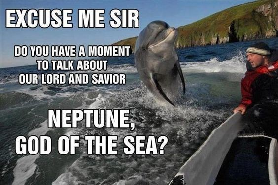 Marine mammal - EXCUSE ME SIR DO YOU HAVE A MOMENT TO TALK ABOUT OUR LORD AND SAVIOR NEPTUNE GOD OF THE SEA?