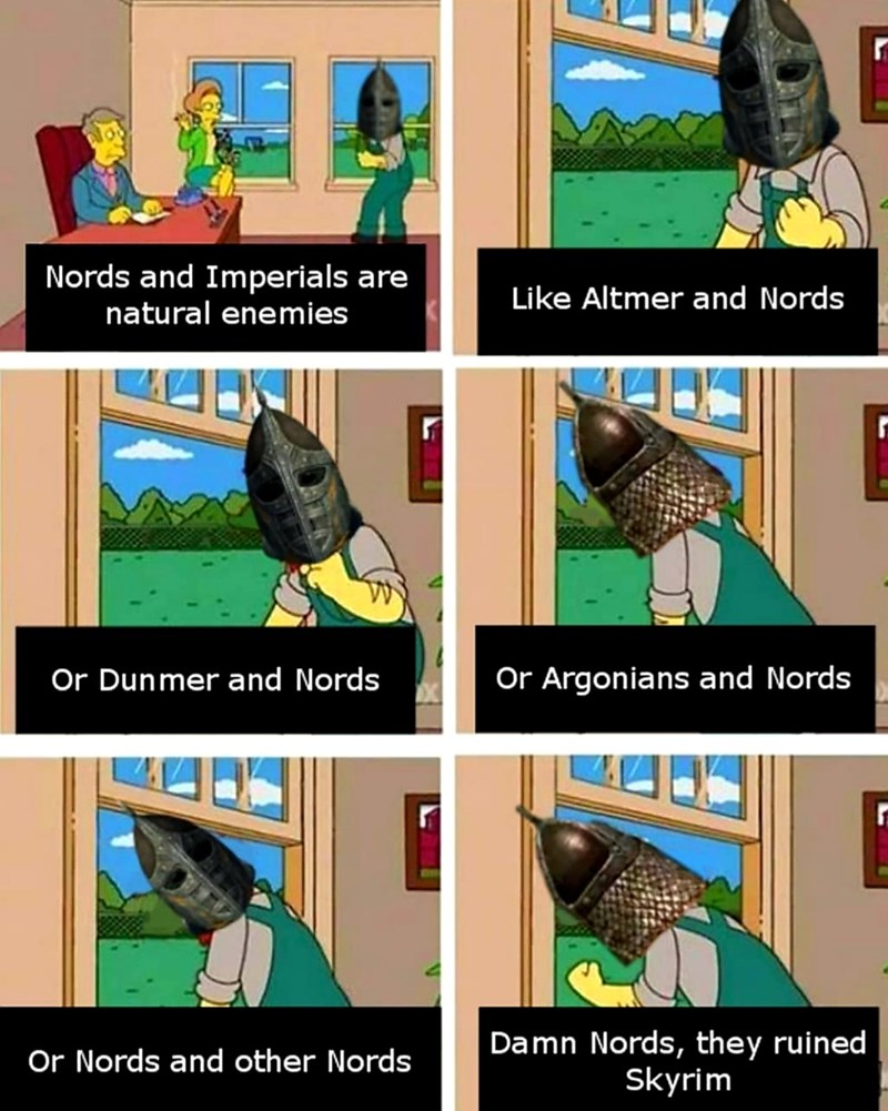 dank meme - Bird - Nords and Imperials are natural enemies Like Altmer and Nords Or Dunmer and Nords Or Argonians and Nords Damn Nords, they ruined Skyrim Or Nords and other Nords