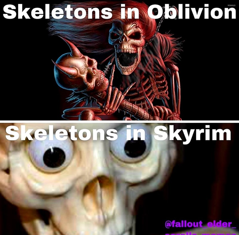 dank meme - Fictional character - Skeletons in Oblivion SUWALLS Skeletons in Skyrim @fallout elder