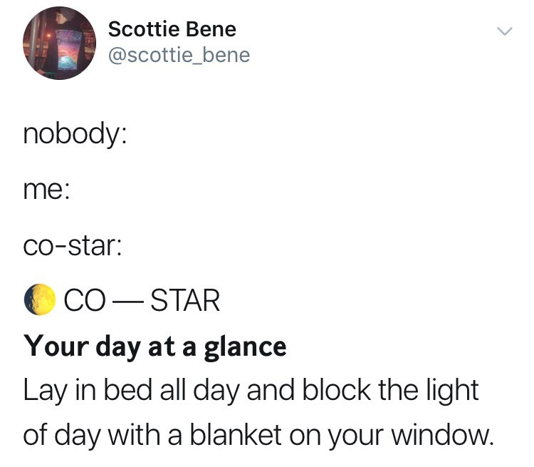 Text - Scottie Bene @scottie_bene nobody: me: Co-star: СО — STAR Your day at a glance Lay in bed all day and block the light of day with a blanket on your window.
