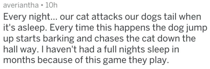Text - averiantha 10h Every night... our cat attacks our dogs tail when it's asleep. Every time this happens the dog jump up starts barking and chases the cat down the hall way. I haven't had a full nights sleep in months because of this game they play.
