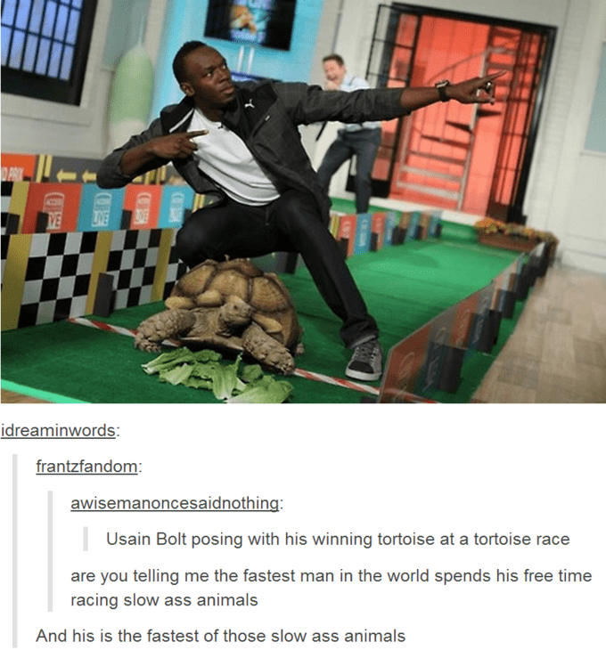 Photo caption - PRIK IVE VE idreaminwords: frantzfandom awisemanoncesaidnothing: Usain Bolt posing with his winning tortoise at a tortoise race are you telling me the fastest man in the world spends his free time racing slow ass animals And his is the fastest of those slow ass animals CO