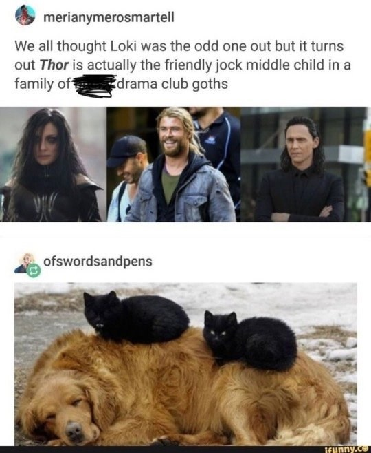 Dog - merianymerosmartell We all thought Loki was the odd one out but it turns out Thor is actually the friendly jock middle child in a family of drama club goths ofswordsandpens