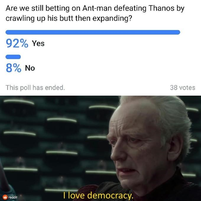 meme - Text - Are we still betting on Ant-man defeating Thanos by crawling up his butt then expanding? 92% Yes 8% No This poll has ended. 38 votes Tlove democracy. reddit