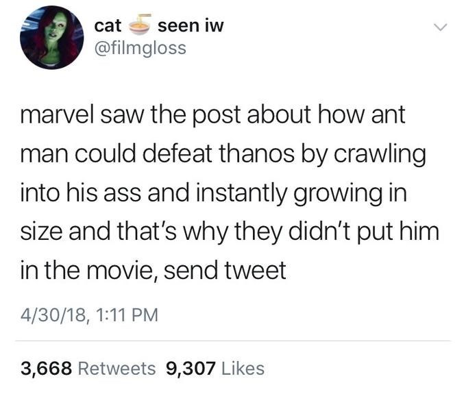 meme - Text - seen iw cat @filmgloss marvel saw the post about how ant man could defeat thanos by crawling into his ass and instantly growing in size and that's why they didn't put him in the movie, send tweet 4/30/18, 1:11 PM 3,668 Retweets 9,307 Likes