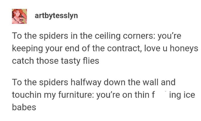 Text - artbytesslyn To the spiders in the ceiling corners: you're keeping your end of the contract, love u honeys catch those tasty flies To the spiders halfway down the wall and touchin my furniture: you're on thin f ing ice babes