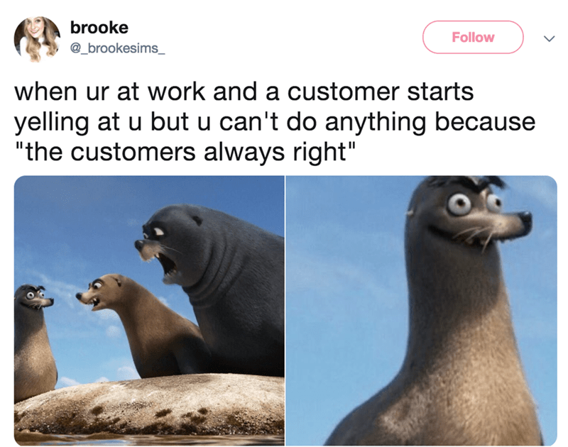 """California sea lion - brooke Follow @_brookesims_ when ur at work and a customer starts yelling at u but u can't do anything because """"the customers always right"""""""