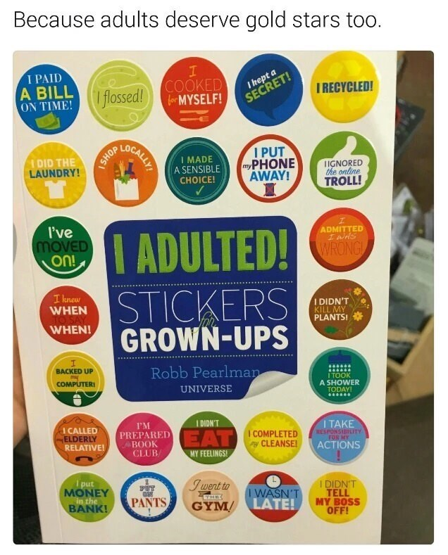 "Caption that reads, ""Because adults deserve gold stars too"" above a pic of a board with a bunch of stickers listing mundane day-to-day activities"