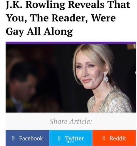 Face - J.K. Rowling Reveals That You, The Reader, Were Gay All Along Share Article: 5Twitter Facebook Reddit