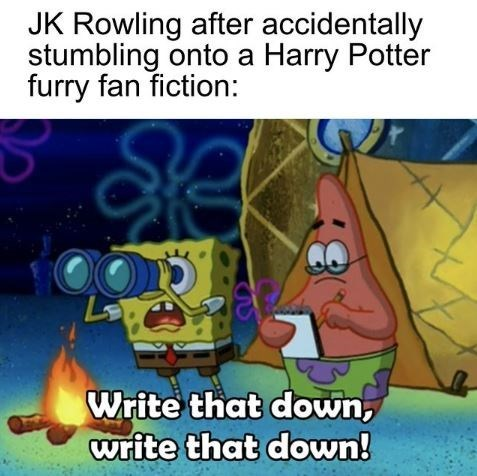 Cartoon - JK Rowling after accidentally stumbling onto a Harry Potter furry fan fiction: Write that down, write that down!