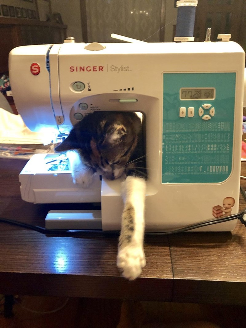Sewing machine - SINGER Stylist TSASEBH 18R008 3Maler.10l9f0