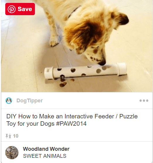 Canidae - Save Dog Tipper DIY How to Make an Interactive Feeder Puzzle Toy for your Dogs #PAW2014 10 Woodland Wonder SWEET ANIMALS