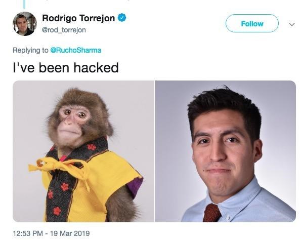 monkey meme comparing a human journalists headshot next to a monkeys