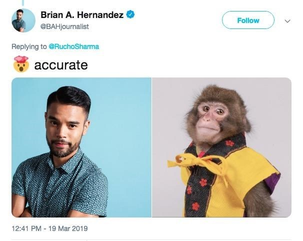 monkey journalist headshot compared to a real one