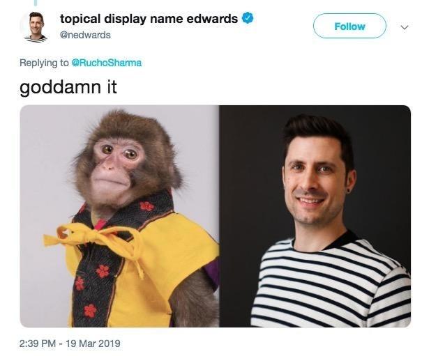 monkey meme about a journalist realizing his headshot looks like a pic of a monkey