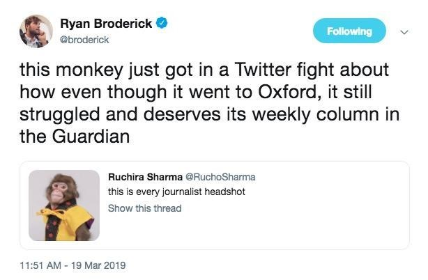 monkey journalist meme about how the monkey looks like it went to Oxford