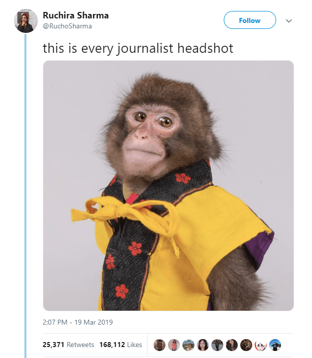 Monkey meme of a monkey that looks like a headshot of a journalist
