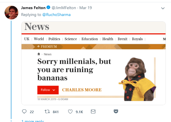 Monkey journalist about a monkey writing an article for millennials