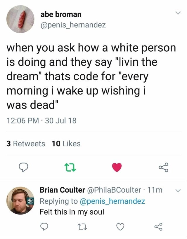 "Text - abe broman @penis_hernandez when you ask how a white person is doing and they say ""livin the dream"" thats code for ""every morning i wake up wishing i was dead"" 12:06 PM 30 Jul 18 3 Retweets 10 Likes Brian Coulter @PhilaBCoulter 11m Replying to @penis_hernandez Felt this in my soul"