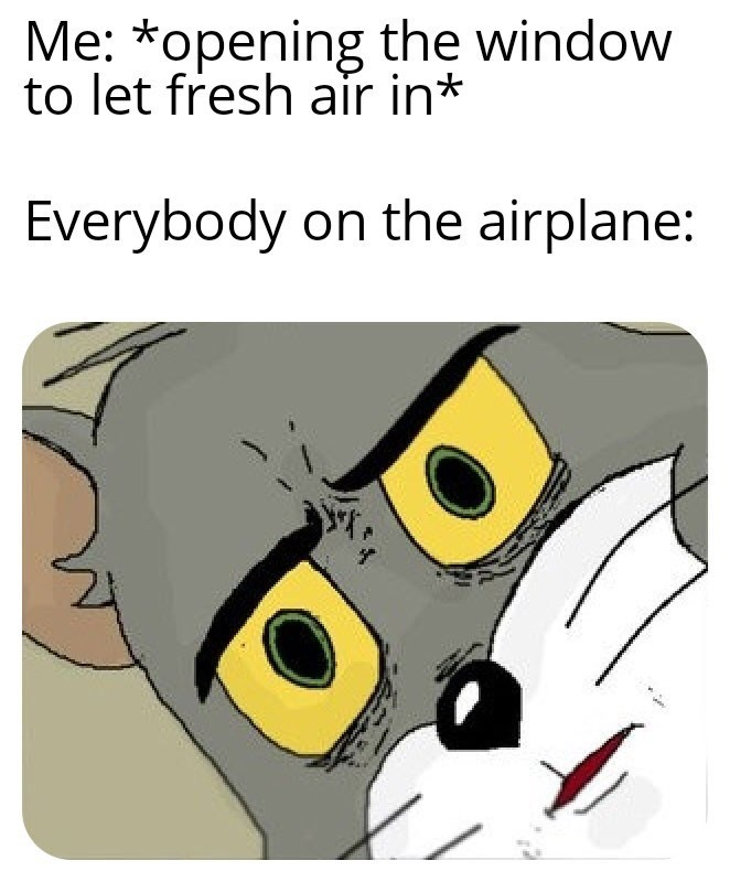 meme - Cartoon - Me: *opening the window to let fresh air in* Everybody on the airplane: ww
