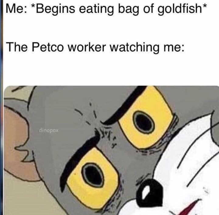 meme - Cartoon - Me: *Begins eating bag of goldfish* The Petco worker watching me: dinopox