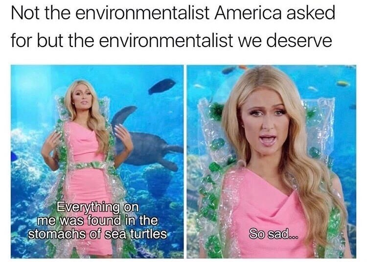 Text - Not the environmentalist America asked for but the environmentalist we deserve Everything on me was found in the stomachs of sea turtles So sad...