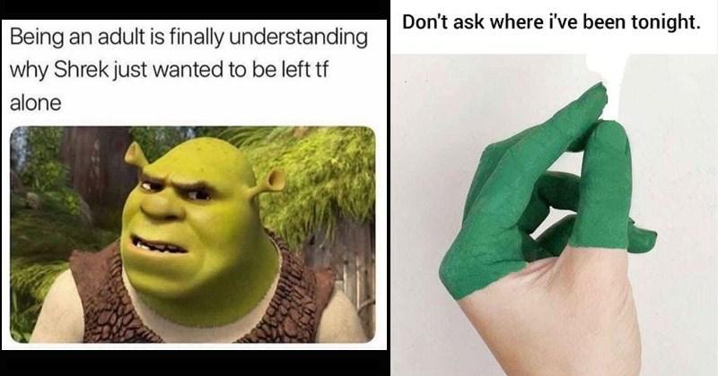 Memebase Shrek Memes All Your Memes In Our Base Funny Memes Cheezburger