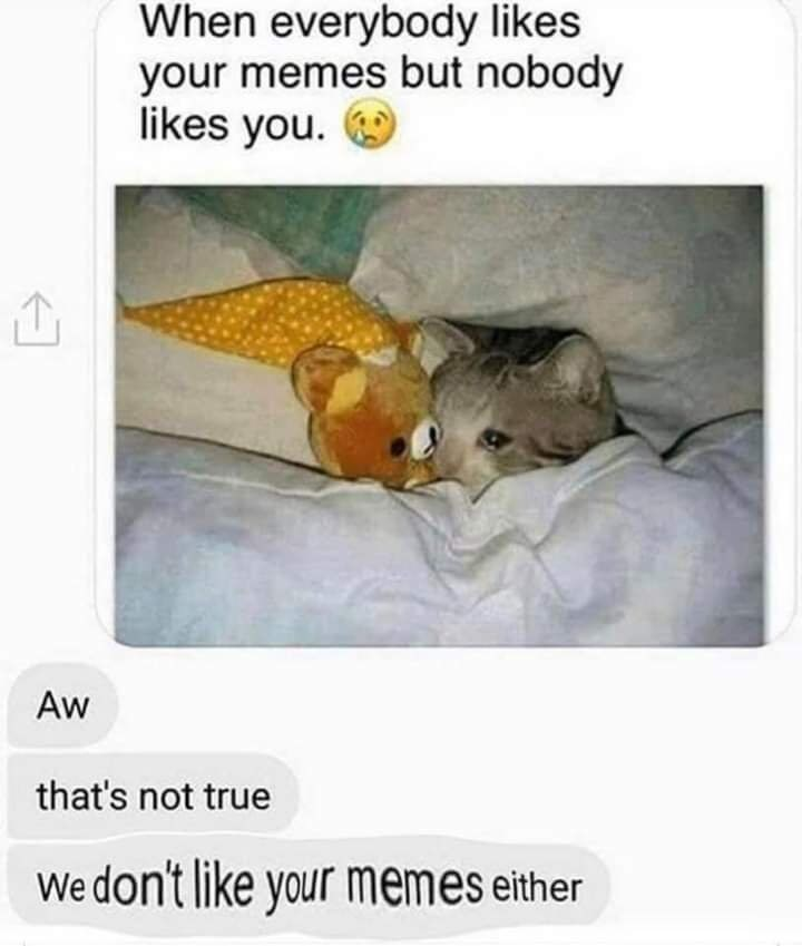 Text - When everybody likes your memes but nobody likes you. Aw that's not true We don't like your memes either