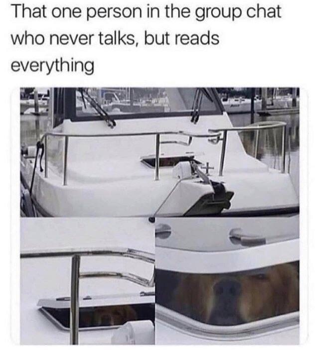 meme - Water transportation - That one person in the group chat who never talks, but reads everything
