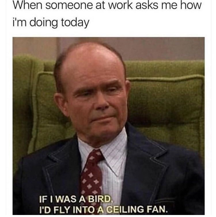 meme - Photo caption - When someone at work asks me how i'm doing today IF I WAS A BIRD I'D FLY INTOA CEILING FAN.