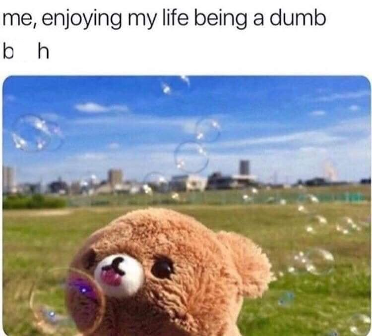 """Caption that reads, """"Me, enjoying my life being a dumb b*tch"""" above a pic of a stuffed bear licking a bubble in a field"""