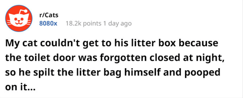 Text - r/Cats 18.2k points 1 day ago 8080x My cat couldn't get to his litter box because the toilet door was forgotten closed at night, so he spilt the litter bag himself and pooped on i...