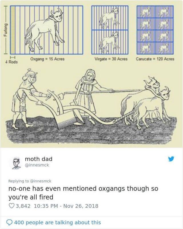 imperial vs metric - Text - Oxgang 15 Acres Virgate= 30 Acres Carucate 120 Acres 4 Rods moth dad @innesmck Replying to @innesmck no-one has even mentioned oxgangs though so you're all fired 3,842 10:35 PM Nov 26, 2018 400 people are talking about this Furlong