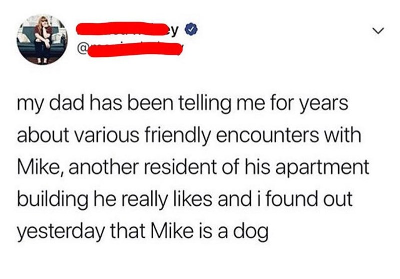 Text - my dad has been telling me for years about various friendly encounters with Mike, another resident of his apartment building he really likes and i found out yesterday that Mike is a dog