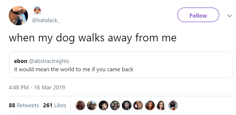 Text - Follow @katalack_ when my dog walks away from me ebon @abstractnights it would mean the world to me if you came back 4:48 PM - 16 Mar 2019 88 Retweets 261 Likes >