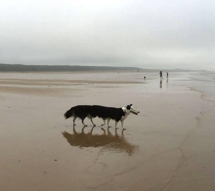 panoramic fails - Sand