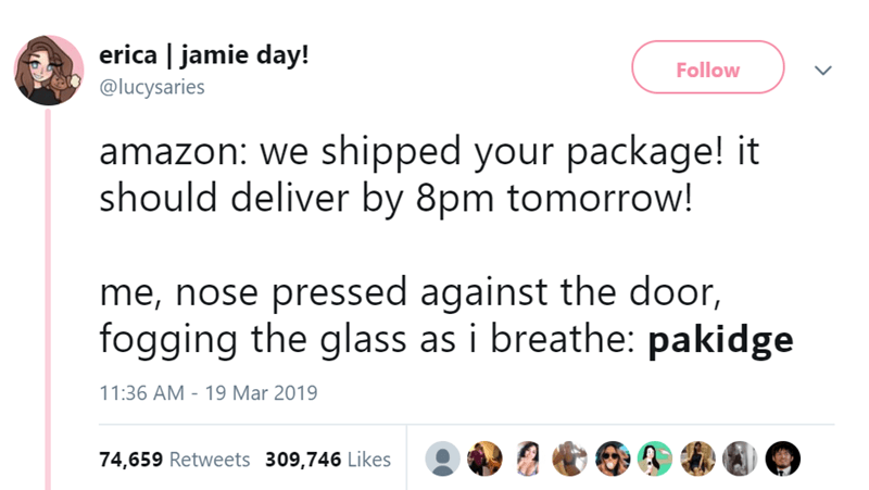 Text - erica | jamie day! Follow @lucysaries amazon: we shipped your package! it should deliver by 8pm tomorrow! me, nose pressed against the door, fogging the glass as i breathe: pakidge 11:36 AM - 19 Mar 2019 74,659 Retweets 309,746 Likes