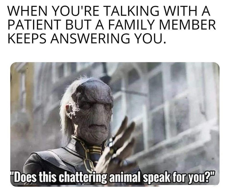 """Text - WHEN YOU'RE TALKING WITH A PATIENT BUT A FAMILY MEMBER KEEPS ANSWERING YOU. Does this chattering animal speak for you?"""""""