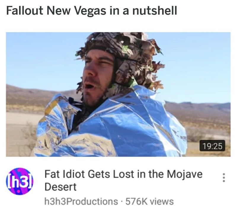 fallout meme about the game being about a guy lost in a dessert