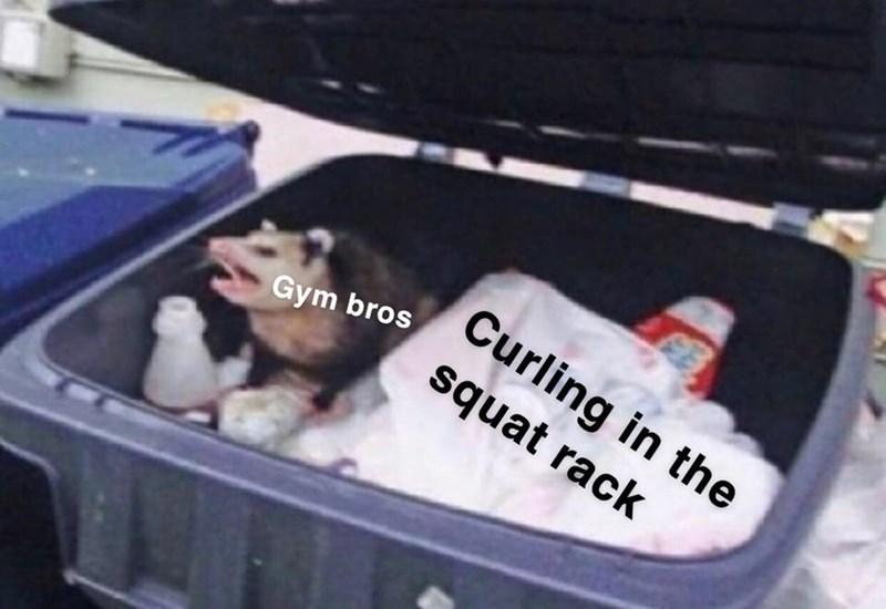 meme about curling in the squat rack with a possum inside a trashcan