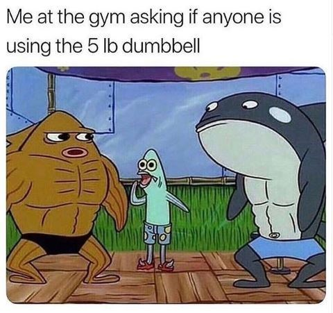 meme about lifting small weights with pic of thin fish between huge bodybuilders