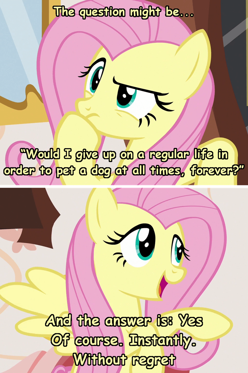 incorrect my little pony quotes screencap welcome to night vale comic discordant harmony fluttershy - 9286291712