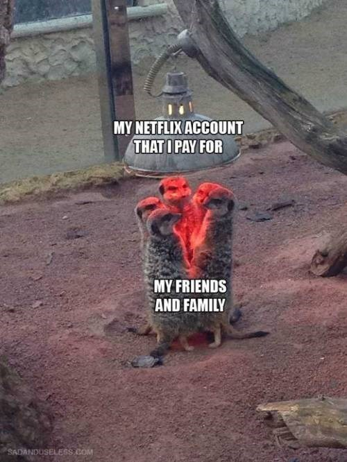 Tree - MY NETFLIX ACCOUNT THAT I PAY FOR MY FRIENDS AND FAMILY SADANDUSELESS COM